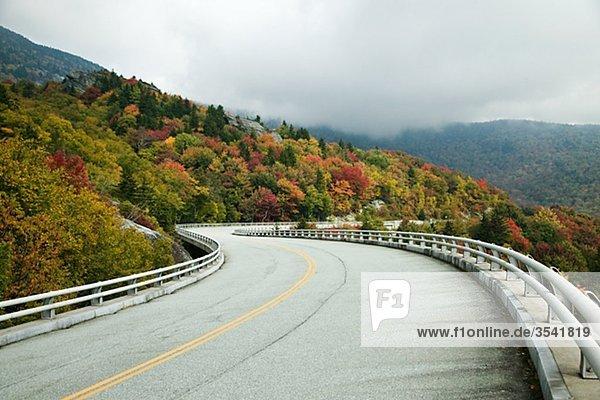 North America  USA  North Carolina  View of road passing by Blue Ridge Parkway