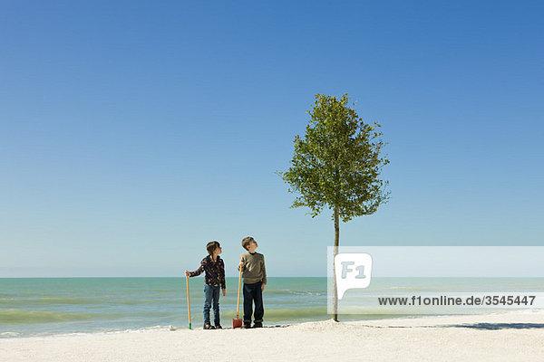 Kinder stehen mit Schaufeln neben einem am Strand gepflanzten Baum.