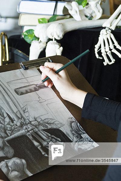 Künstlerin beim Zeichnen von Stillleben