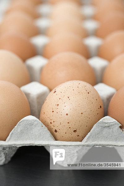 Frische braune Eier im Karton