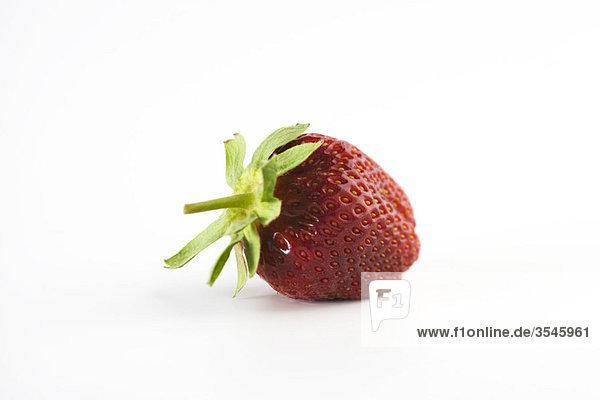 Frische Erdbeere