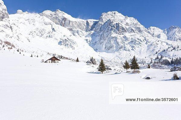 Die Stegmoosalm unter dem Birgkar am Hochkönig  Berchtesgadener Alpen  Österreich