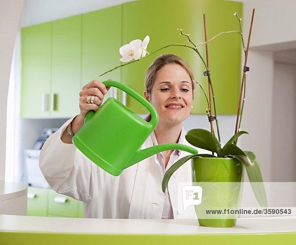Doktor Bewässerungsanlage