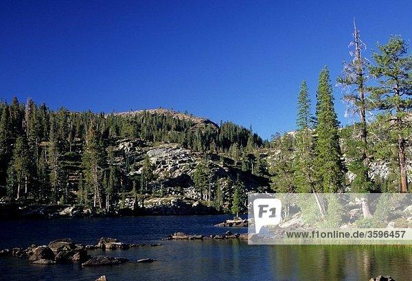Big Bear Lake  Lakes Basin Recreation Area  Plumas National Forest  CA