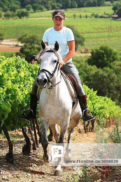 Provence - Europa - 83 Var - Frankreich - Rebe - Grimaud - PACA - Relay von la Mene - obligatorische erwähnen