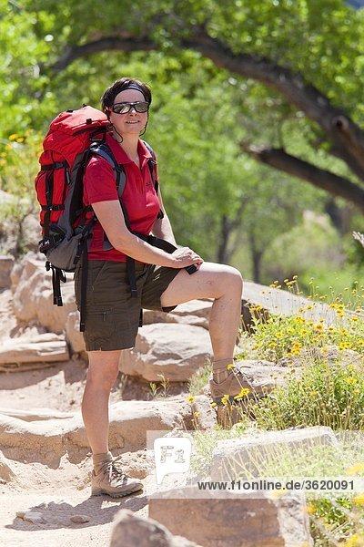 Bright Angel Trail  Grand Canyon  Arizona  USA