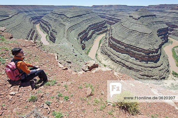 Goosenecks State Park und San Juan River  Utah  USA