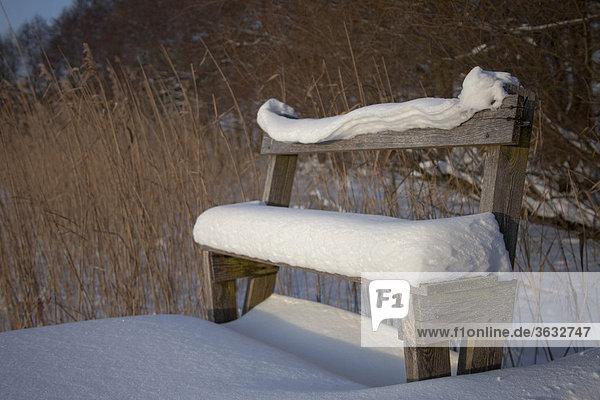 Eine verschneite Bank auf einem Steg im winterlichen Westpommern  Polen  Europa