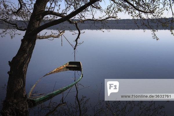 Ein gesunkenes Ruderboot im Moryner See  Polen  Europa