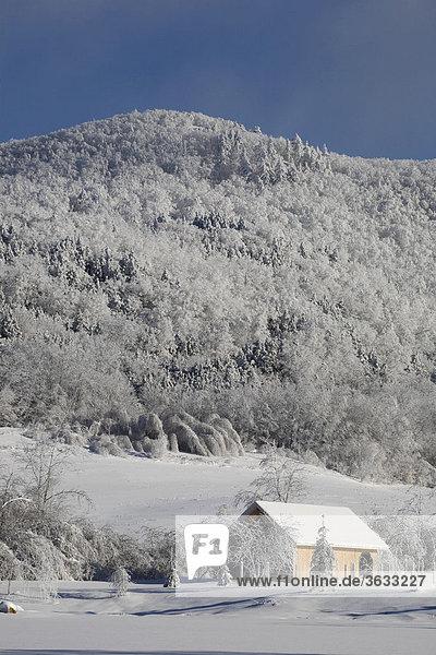 Snowy landscape in winter  Canada