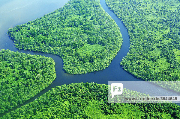 Estuary with delta and tropical vegetation  aerial view  Nicaragua  Central America
