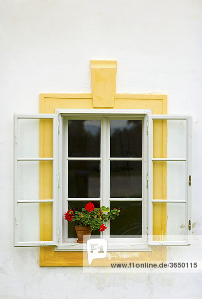 Blumentopf am Fensterbrett  Schloss Hof  Niederösterreich  Österreich  Europa