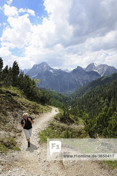 Frau beim Wandern  Aufstieg zum Plumsjoch im Karwendelgebirge  Rißbachtal  Tirol  Österreich  Europa