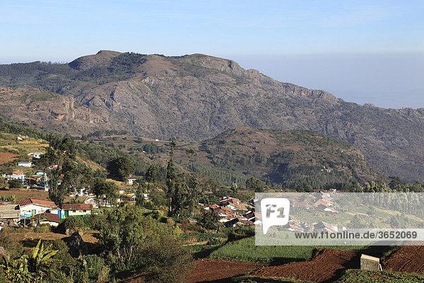 Dorf in Nilgiri Hills nahe Ooty  Nilgiris  Tamil Nadu  Tamilnadu  Südindien  Indien  Südasien  Asien