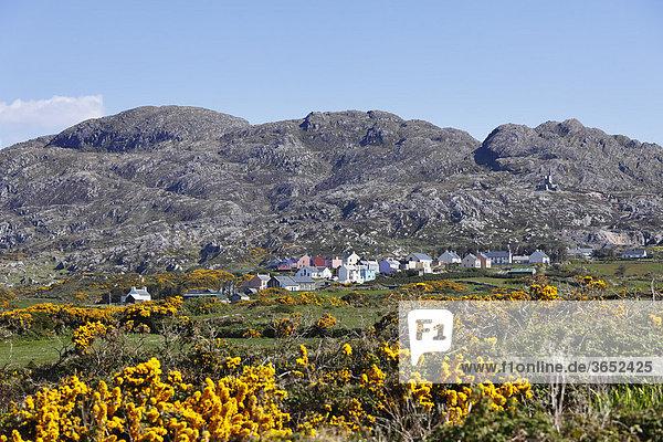 Allihies  Slieve Miskish Mountains  Beara-Halbinsel  County Cork  Irland  Britische Inseln  Europa