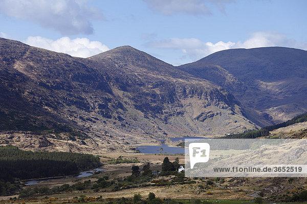 Black Valley  nahe Killarney  County Kerry  Irland  Britische Inseln  Europa