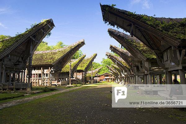 Ke'te Kesu' Dorf mit traditionellen Toraja-Häusern  in der Nähe von Rantepao  Sulawesi  Indonesien  Südostasien