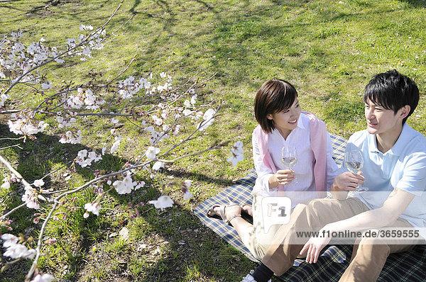 Junges Paar beim Picknick unter Kirschblüten
