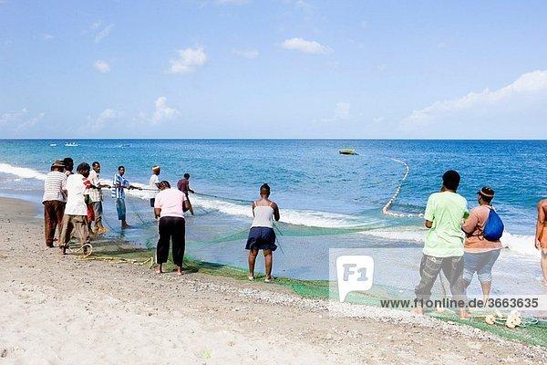 fishermen  Gouyave Bay  Grenada