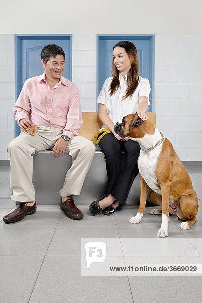 sitzend Mann Hund streicheln Tierarzt
