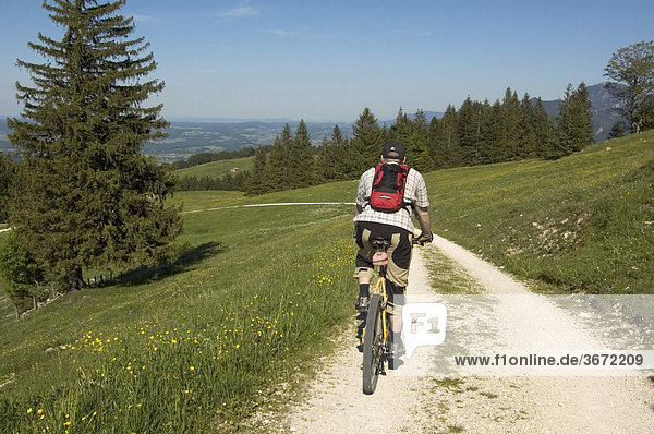Mountainbiker between Grassau and rottau in the Chiemgau on the way to the Grossstaffen or Fahrnpoint Bavaria Germany