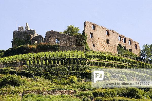 Staufen im Breisgau Baden-Württemberg Deutschland Ruine der nach 1632 zerstörten Burg Staufen im Breisgau Baden-Württemberg Deutschland Ruine der nach 1632 zerstörten Burg