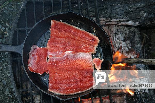 Zubereitung eines Lachses in einer Gußeisenpfanne Alaska USA