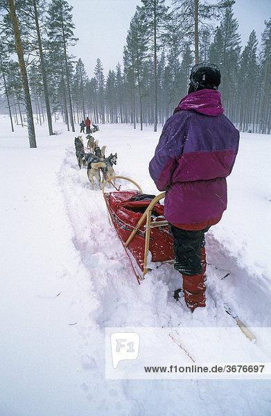 Schlittenhunde-Tour im Fulufjell Norwegen