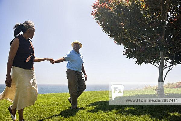 Seniorenpaar Hand in Hand auf einer Wiese am Meer
