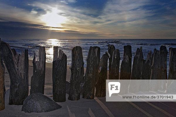 Buhne am Strand in Westerland  Insel Sylt  Nordsee  Schleswig-Holstein  Deutschland  Europa