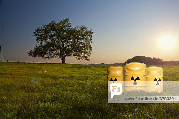 Atommüll in idyllischer Landschaft