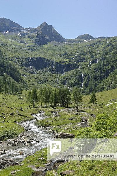 Talschluss bei der Putzentalalm  Naturpark Sölktäler  Schladminger Tauern  Steiermark  Österreich  Europa