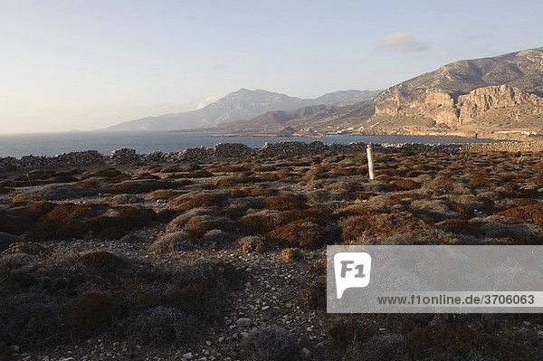 Paleokastro bei Arkassa  Insel Karpathos  Ägäische Inseln  Ägäis  Dodekanes  Griechenland  Europa