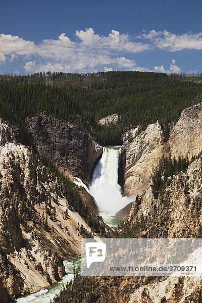 Lower Falls Wassefall  Canyon Village  Yellowstone National Park  Wyoming  USA