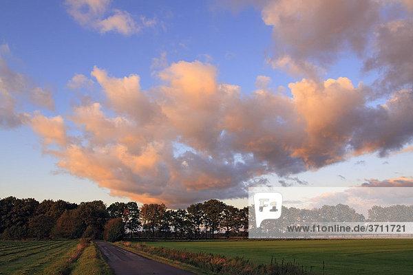 Dramatischer Himmel mit rot angestrahlten Wolken im letzten Abendlicht bei Sonnenuntergang  Landschaft im Naturschutzgebiet Oberalsterniederung  Tangstedt  Schleswig-Holstein  Deutschland  Europa