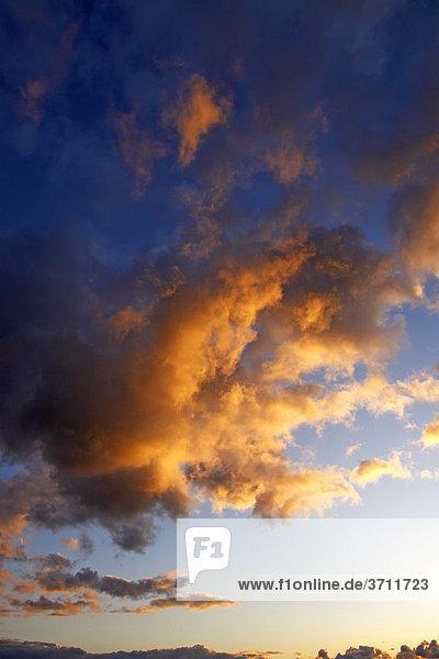 Dramatischer Himmel mit von unten angestrahlten roten Wolken im letzten Abendlicht bei Sonnenuntergang  Landschaft im Naturschutzgebiet Oberalsterniederung  Tangstedt  Schleswig-Holstein  Deutschland  Europa
