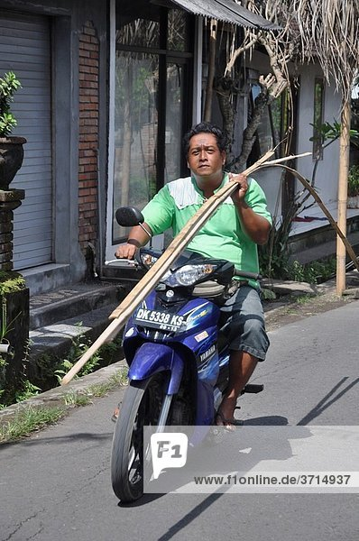 Ubud (Bali  Indonesia): a man driving a motor-bike with one hand while carrying some very long sticks