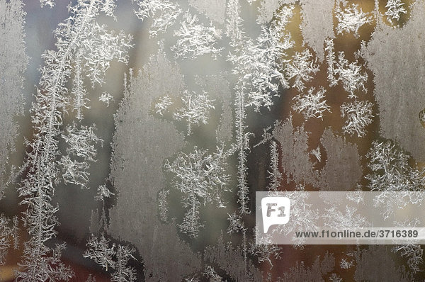 Ice crystals at glass pane