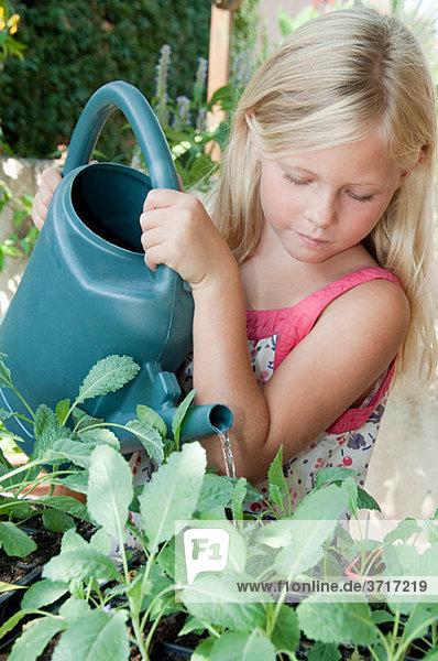 Mädchenbewässerungsanlagen