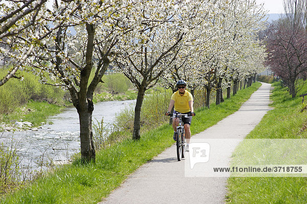 Bicycle route along the Triesting valley near the village of Pottenstein Lower Austria