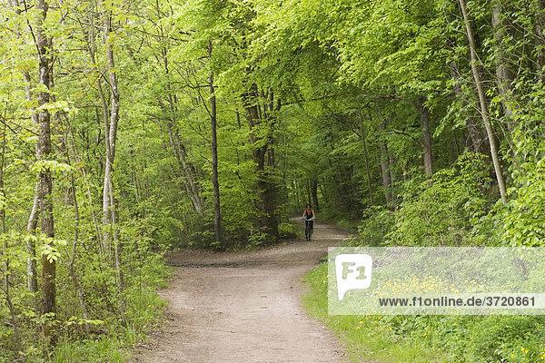 Biker in forest near Baierbrunn - Germany