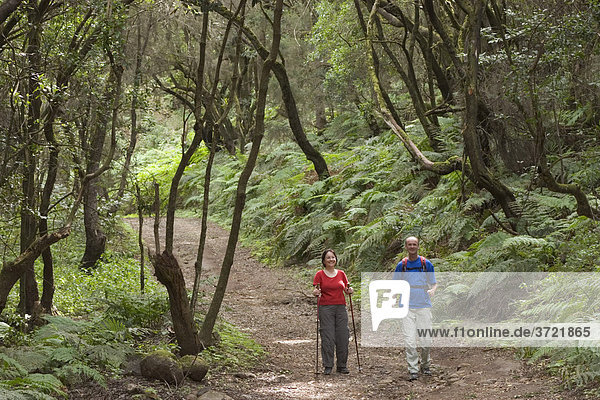 Wanderer in Nationalpark Garajonay - La Gomera Kanaren