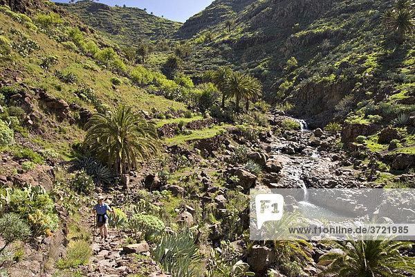 Barranco de Argaga La Gomera Kanaren