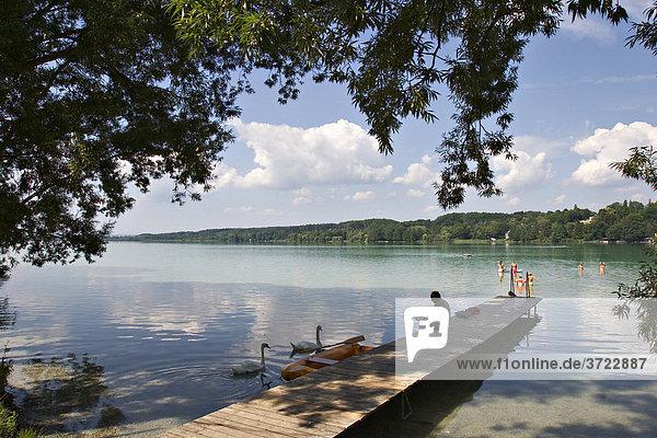 Badesteg am Pilsensee im Fünfseenland - Oberbayern