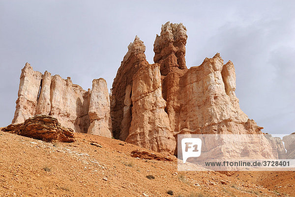 Kalkstein-Felstürme  Hoodoos  Bryce Canyon National Park  Utah  USA