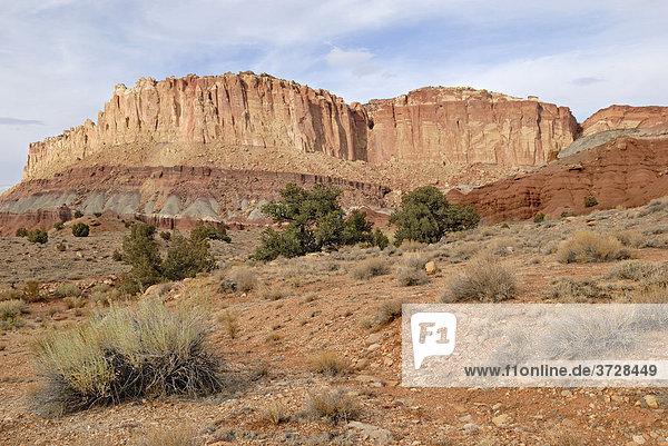 Felsformation aus verschiedenfarbigen Sandsteinlagen  Scenic Drive  Capitol Reef National Park  Utah  USA