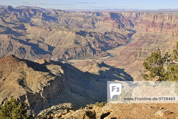 Ausblick auf Colorado River  Desert View  Grand Canyon National Park  Arizona  USA