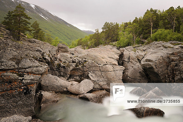 Wilder Fluss Driva im Nationalpark Dovrefjell  Norwegen  Skandinavien  Europa