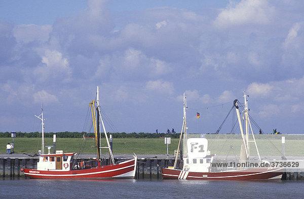 Fischkutter im Hafen von Norddeich  Kutter  Fischfang  Nordsee  Nordseeküste  Niedersachsen  Deutschland  Europa