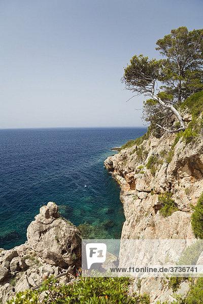 Steile Klippen auf der Insel Hvar  Adria  Dalmatien  Kroatien  Adria  Mittelmeer  Europa